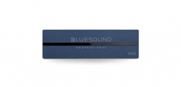Bluesound Professional B100S